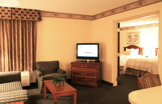 Suite Hampton Inn & Suites Atlanta Airport North I85