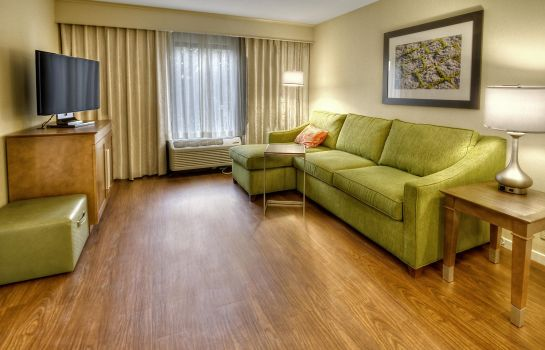 Suite Hampton Inn - Suites Asheville - I-26