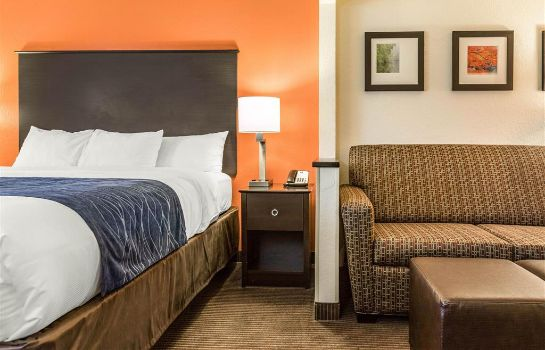 Suite Comfort Inn Wings Stadium Comfort Inn Wings Stadium