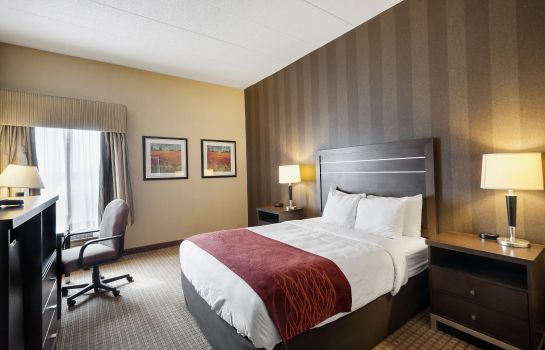 Suite Comfort Inn and Suites Edgewood - Aberde