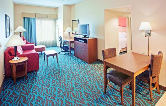 Suite Hampton Inn - Suites Chicago-North Shore-Skokie IL