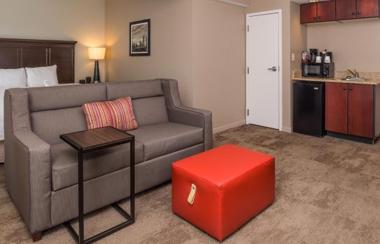 Suite Hampton Inn - Suites Charlotte-Arrowood
