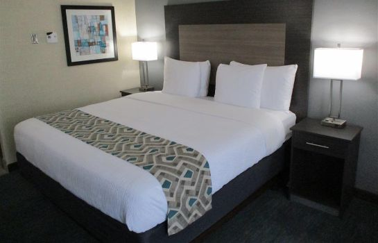 Zimmer Best Western Plus Dallas I-35 at Walnut Hill