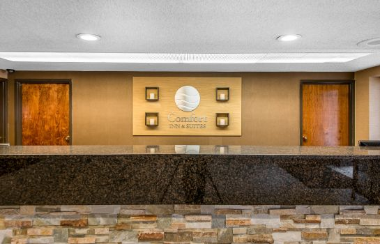 Hall Comfort Inn and Suites Denver