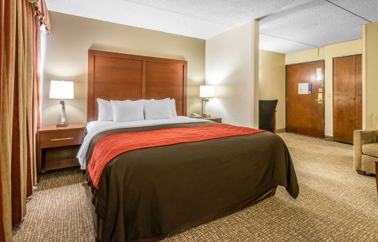 Suite Comfort Inn & Suites Denver