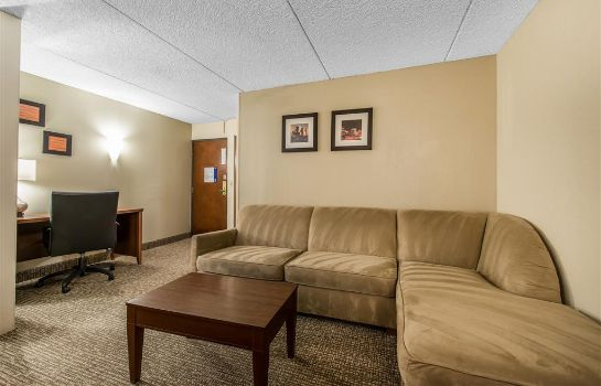 Suite Comfort Inn and Suites Denver