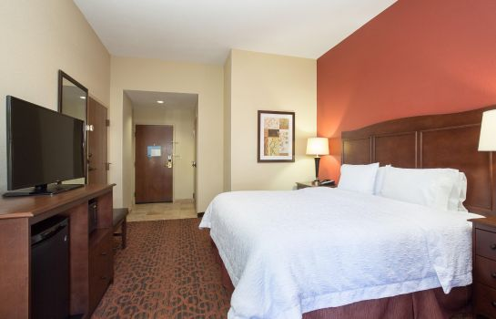 Room Hampton Inn Denver-Intl Airport