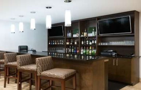 Hotel-Bar WYNDHAM GARDEN GREENVILLE AIRP