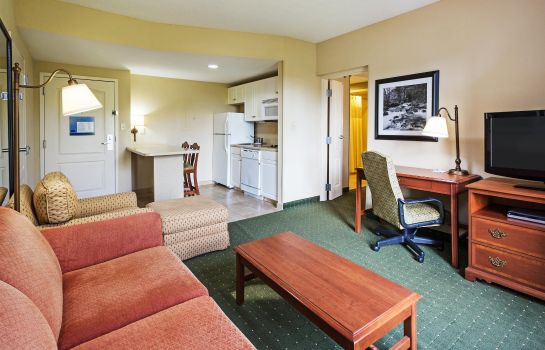 Suite Hampton Inn & Suites Greenville/Spartanburg I-85 SC