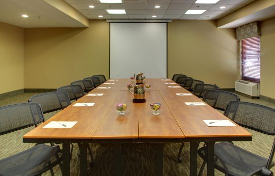 Conference room Hampton Inn Greenville-Woodruff Road