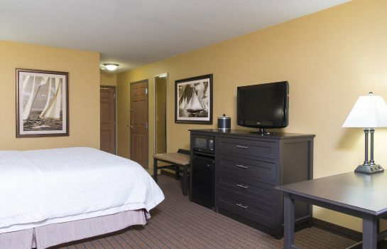 Zimmer Hampton Inn Holland