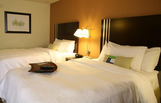 Chambre Hampton Inn - Suites Houston-Cypress Station