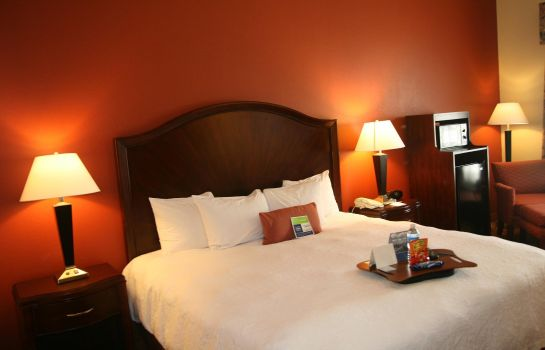 Zimmer Hampton Inn Houston-Humble-Airport Area TX