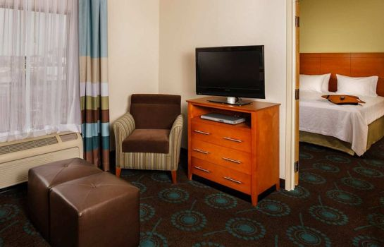Suite Hampton Inn - Suites Houston-Medical Ctr-Reliant Park