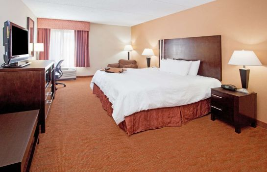 Room Hampton Inn Niagara Falls USA