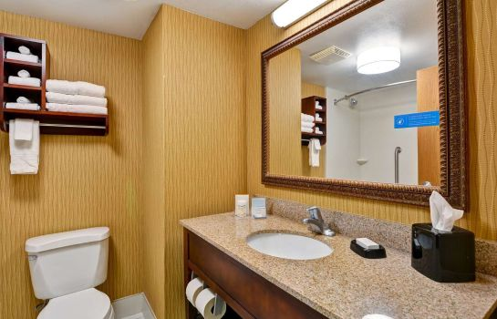 info Hampton Inn Jacksonville-Downtown-I-95 FL