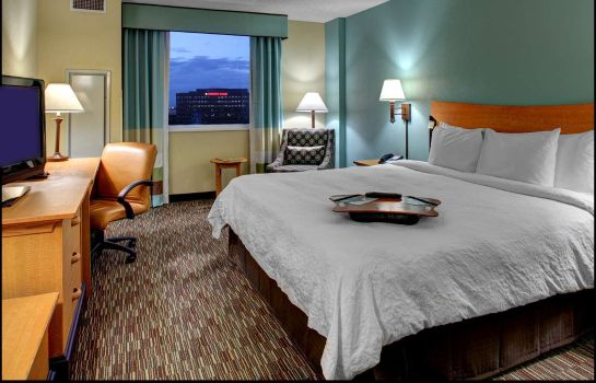 Information Hampton Inn - Suites - Miami-Airport South-Blue Lagoon
