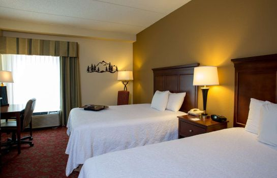 Zimmer Hampton Inn - Suites Pigeon Forge On The Parkway