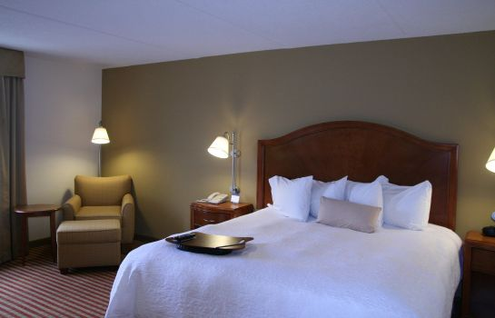 Zimmer Hampton Inn Roanoke-Hollins-I-81