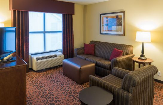 Suite Hampton Inn - Suites Tampa-North
