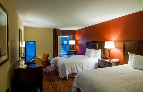 Zimmer Hampton Inn - Suites Tampa-North