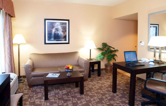 Suite Hampton Inn - Suites-Knoxville-North I-75