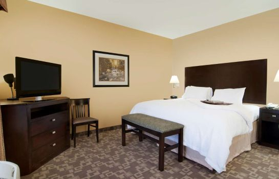 Zimmer Hampton Inn - Suites-Knoxville-North I-75