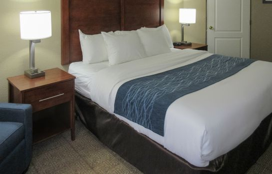 Room Comfort Inn and Suites North Glendale -  Comfort Inn and Suites North Glendale -