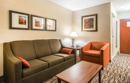 Suite Comfort Suites Golden West on Evergreen Parkway