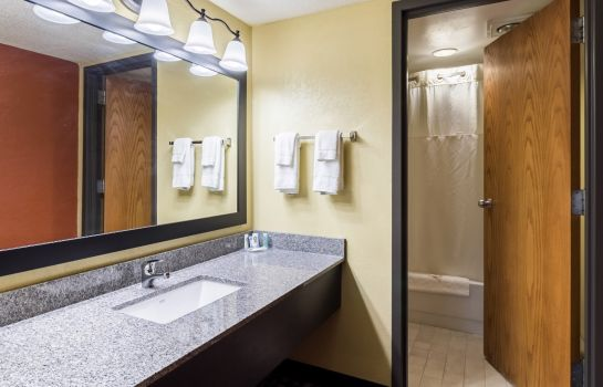 Suite Quality Inn & Suites Mayo Clinic Area