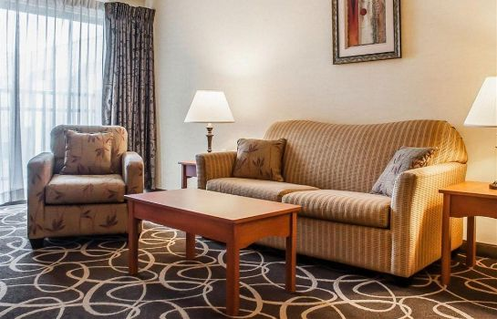 Suite Quality Hotel and Suites At The Falls