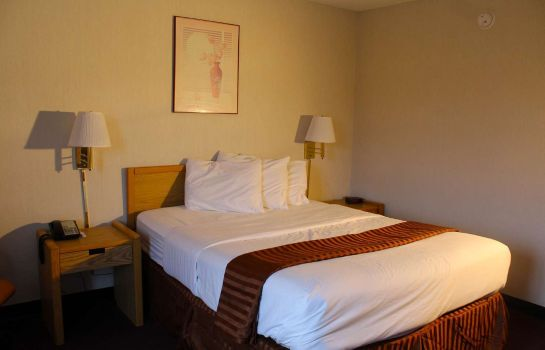 Room Americas Best Value Inn Erie