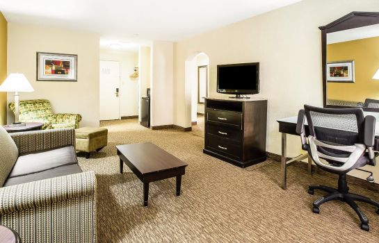 Zimmer Quality Inn and Suites Airpark East