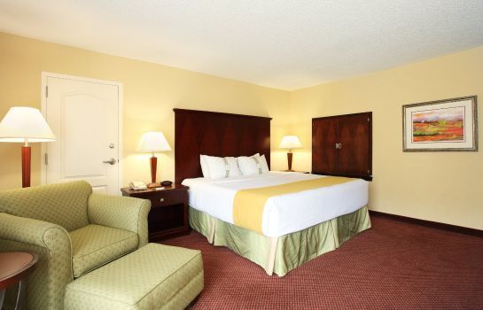 Suite Holiday Inn ASHEVILLE - BILTMORE WEST
