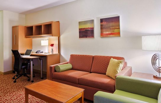 Zimmer TownePlace Suites Charlotte Arrowood