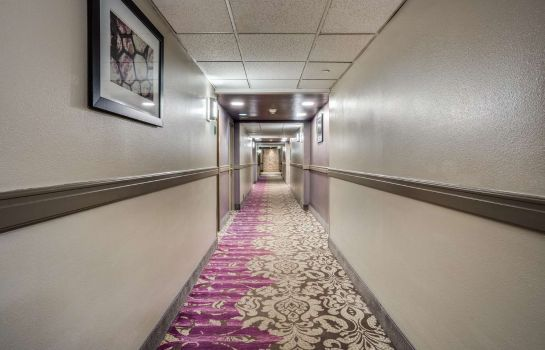 Info Best Western Plus Dallas Hotel & Conference Center