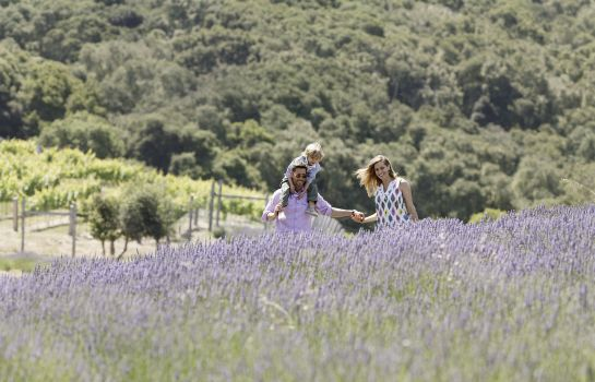 Vista esterna Carmel Valley Ranch