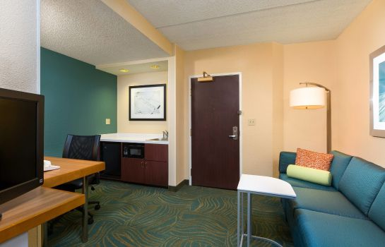 Suite SpringHill Suites Austin South