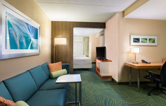 Room SpringHill Suites Austin South