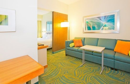 Zimmer SpringHill Suites West Mifflin
