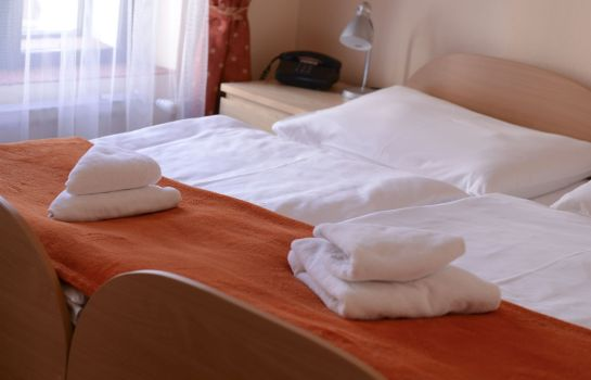 Double room (standard) Paradies