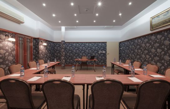 Meeting room Hetman