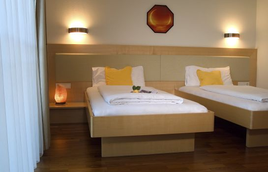 Double room (standard) Valerian - Das Business Hotel