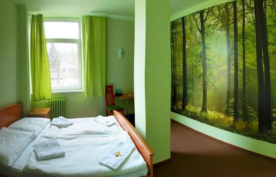 Double room (standard) Liberec