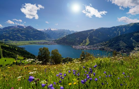 Info AlpenParks Hotel & Apartment Central Zell am See
