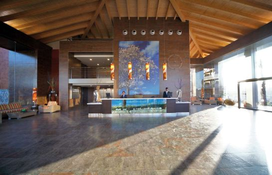 Lobby Occidental Cala Vinas