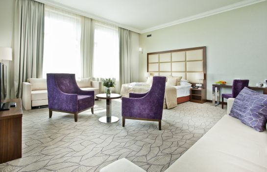 Junior Suite King David Prague