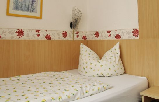 Single room (standard) Goldenes Fass