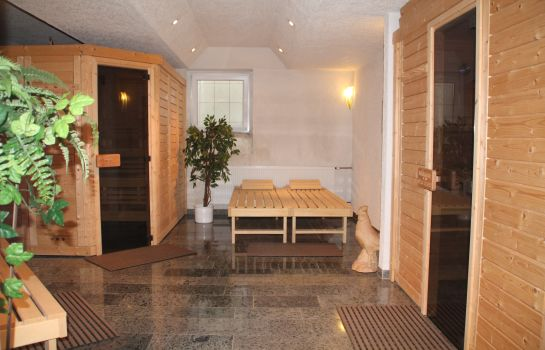 Sauna Riesen Junior