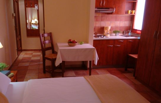 Kitchen in room Aparthotel Lekavski